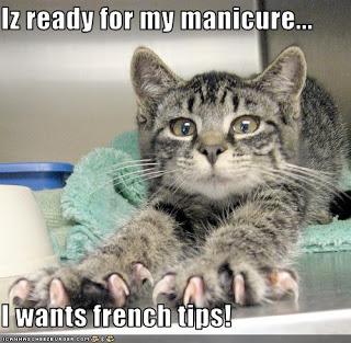 manicurelolcat